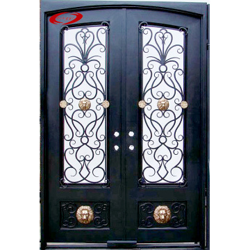 Wrought Iron Double Door with Glass Panels