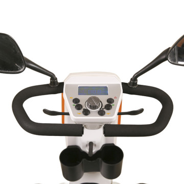 hot Sell Luxury 800w Mobility scooter for golf