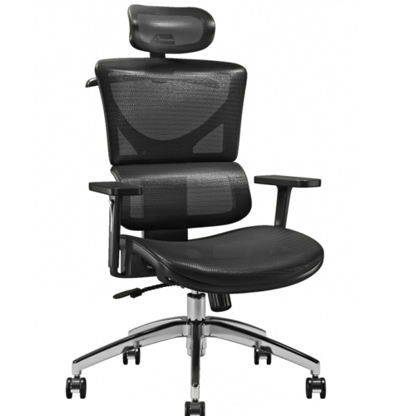 Modern Ergonomic Executive Office Chairs