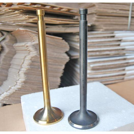 Engine Valves  160A