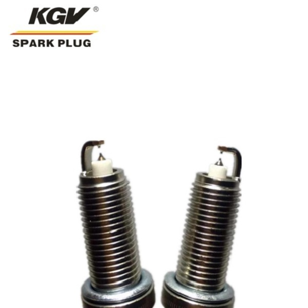 Small Engine Double Iridium Spark Plug D-BP8HIX