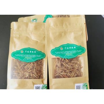 mealworms for your pet