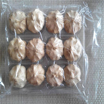 Good Taste Fermented Black Garlic 6 Cm Bulbs