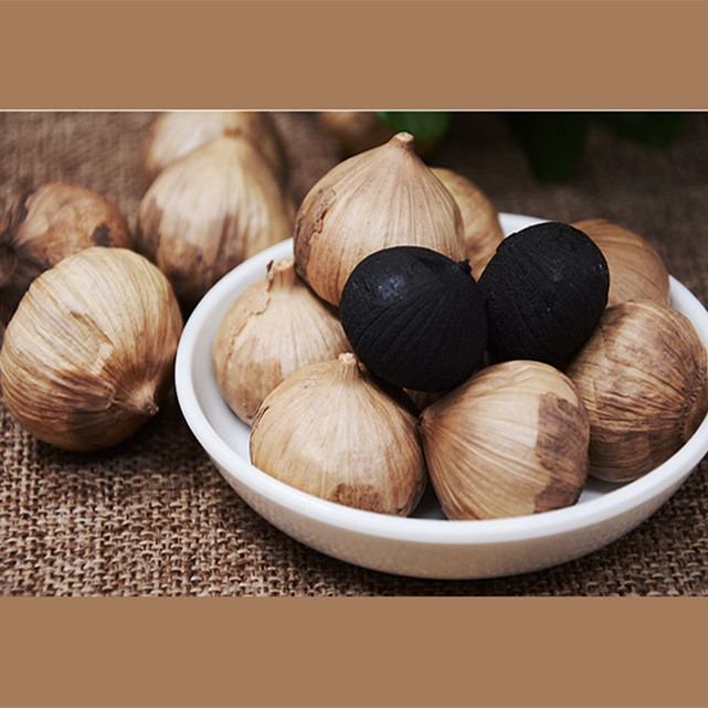 solo black garlic0