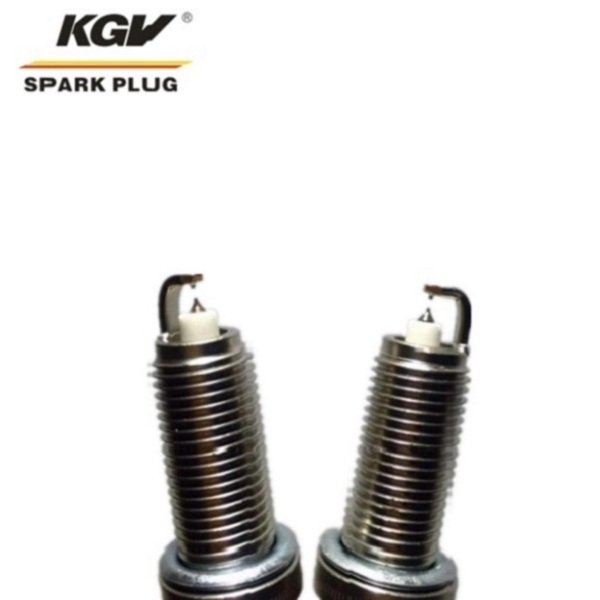 Small Engine Double Iridium Spark Plug D-BR9HIX