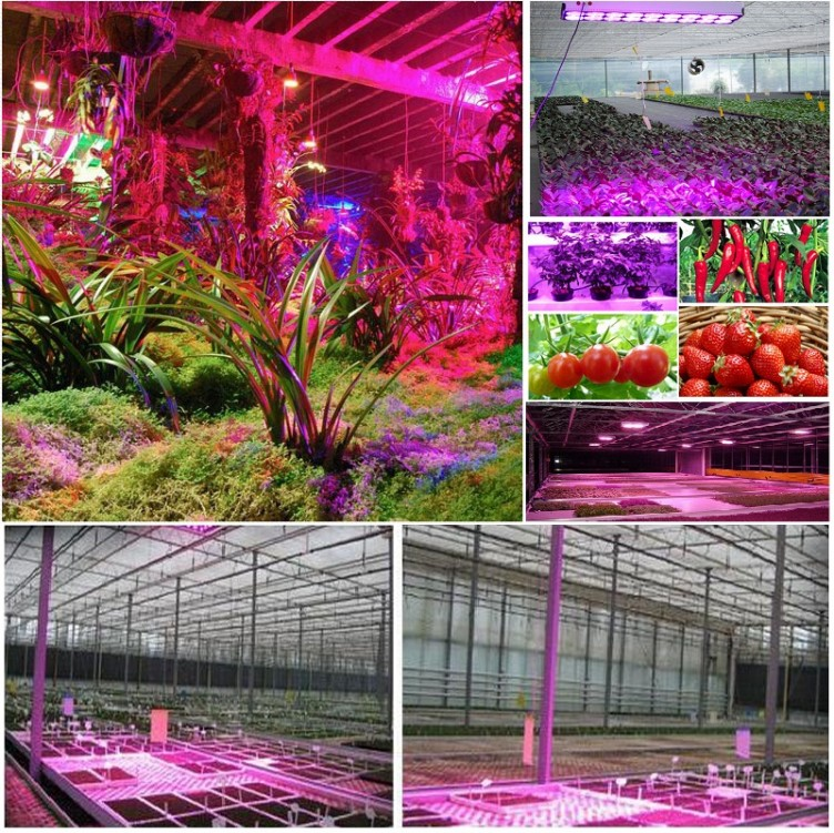 LED Plant Grow Light 45W