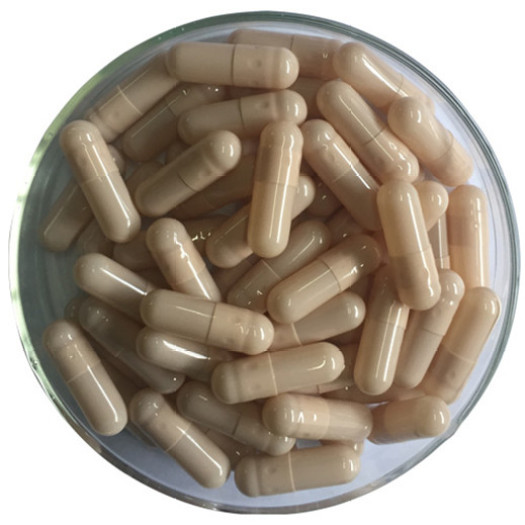 Hard Capsule Gelatin filling powder
