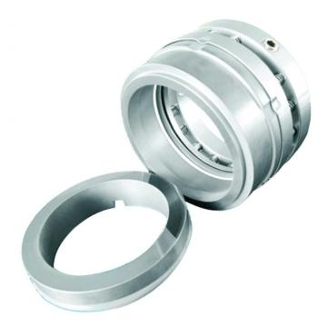 Multi-Spring Rotary Mechanical Seal