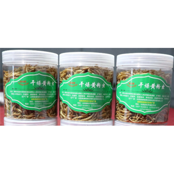 100% Natural Microwave Dried Mealworms