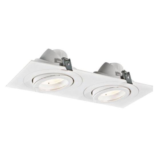 Modern Rectangular 30W2 LED Downlight