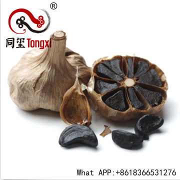 Black Garlic Benefits From Fermenation