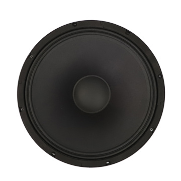 15″  Party/Concert/Opera/Stage  speaker