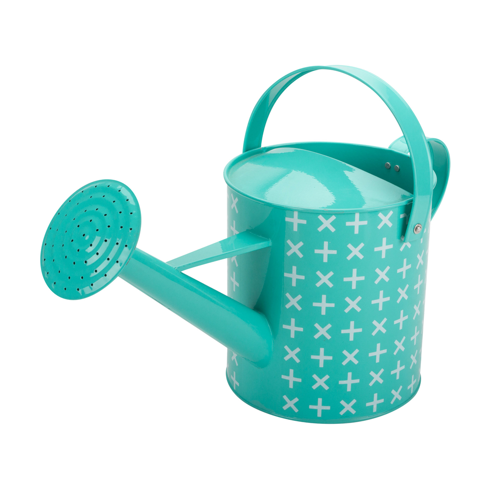 Watering Can Metal Galvanized