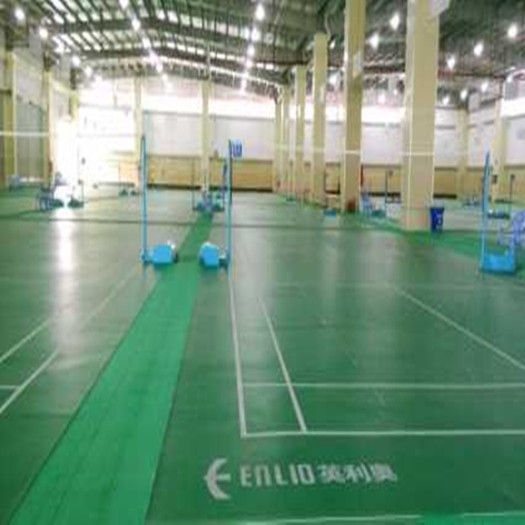 BWF approved Badminton Net