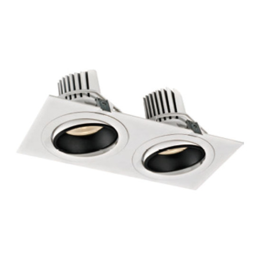 Spectacular Decorative 38W*2 LED Downlight