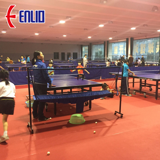 ping-pang courts/competition courts/game courts