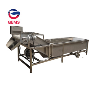 Apple Cleaning Machine Cassava Mushroom Cleaning Machine