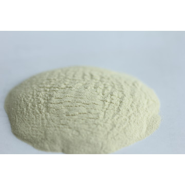 High quality Xylanase for foodstuff