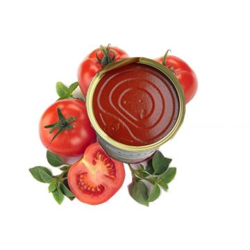 Conventional Canned Food Tomato Paste