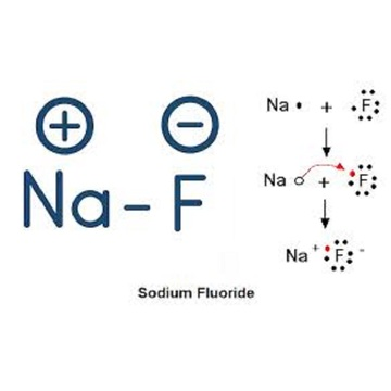 sodium fluoride effects on humans