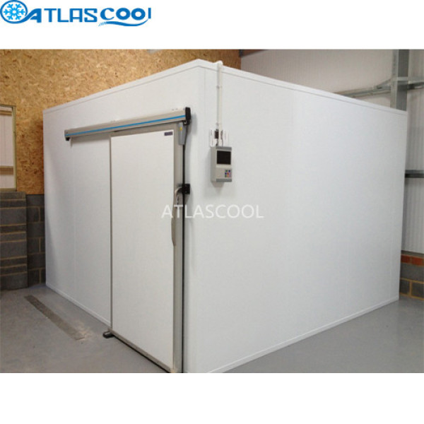 Modular Cold Room Walk in Freezer