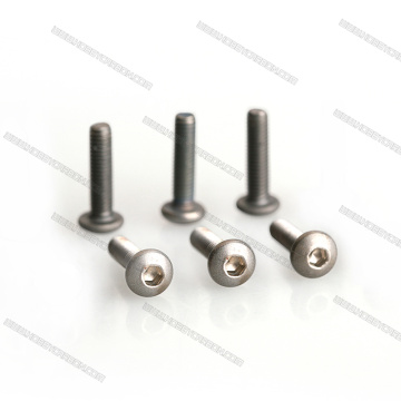 Amazone high quality round hex Titanium Screw M5