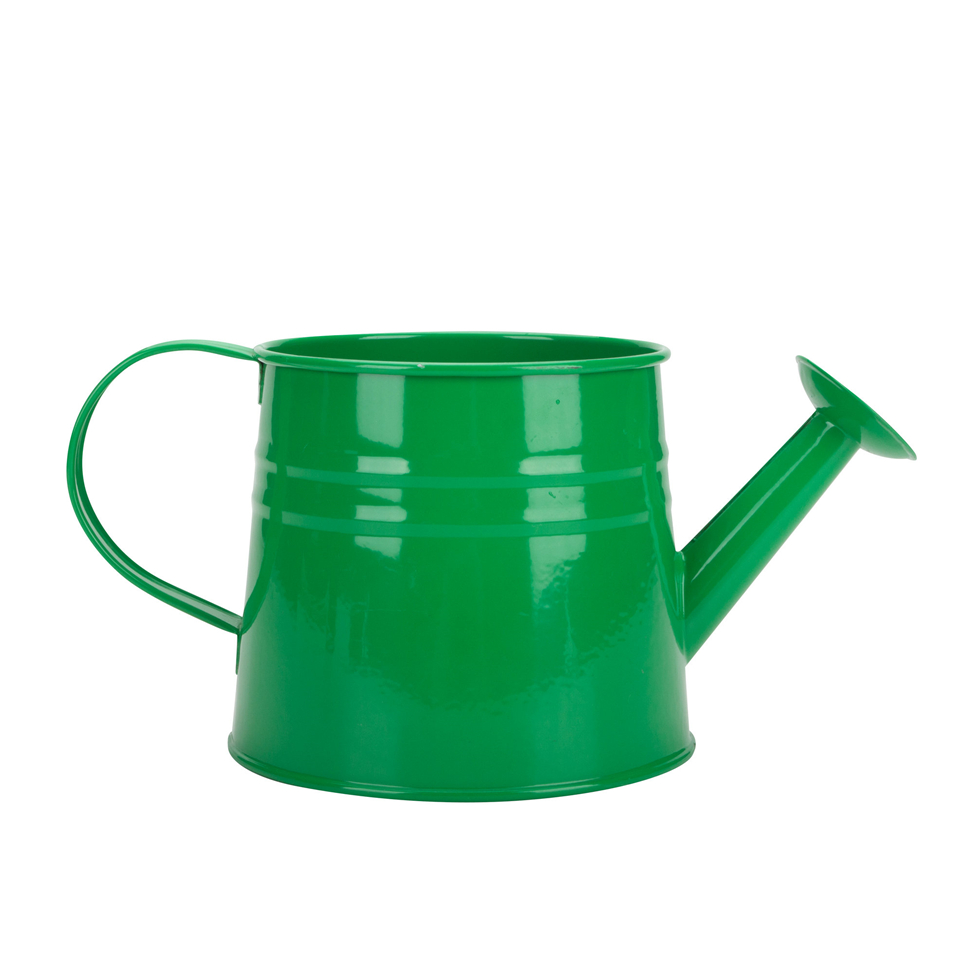 Metal Indoor Watering Can