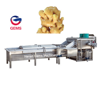 Italy Automatic Ginger Washing and Peeling Machine