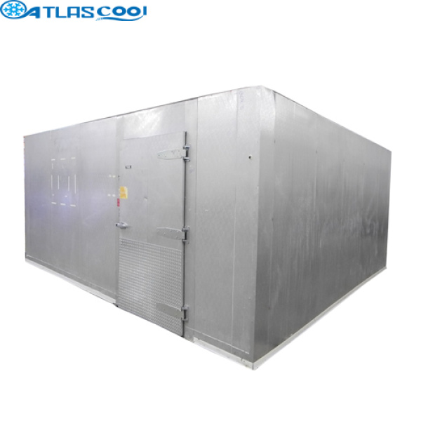 Cold Room for Fish Storage