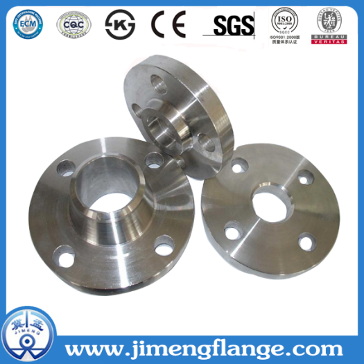 SORF Stainless Steel Flange