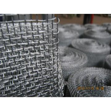 SS 316 Crimped Wire Cloth