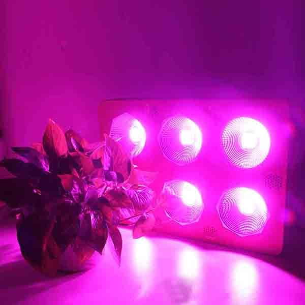 Greenhouse hydroponic 450w cob full spectrum indoor led grow light bar plant light