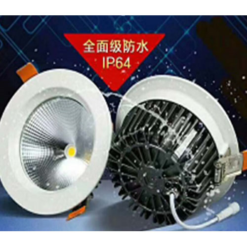 Waterproof IP64 White LED Downlight