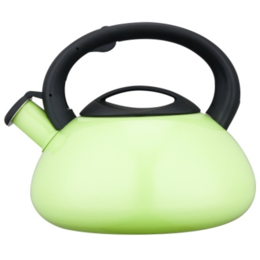 5.0L Stainless Steel Whistling Teakettle with color painting