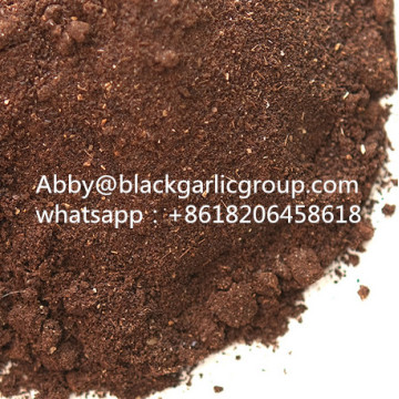 Nutritious extract black garlic powder