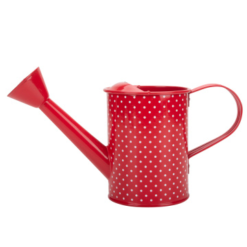 Houseplant Red Watering Can for Succulents