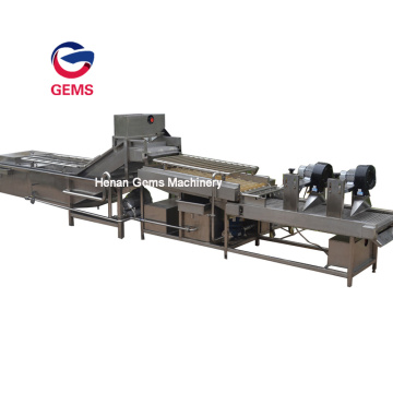 Citrus Fruit Washing Waxing and Grading Machine