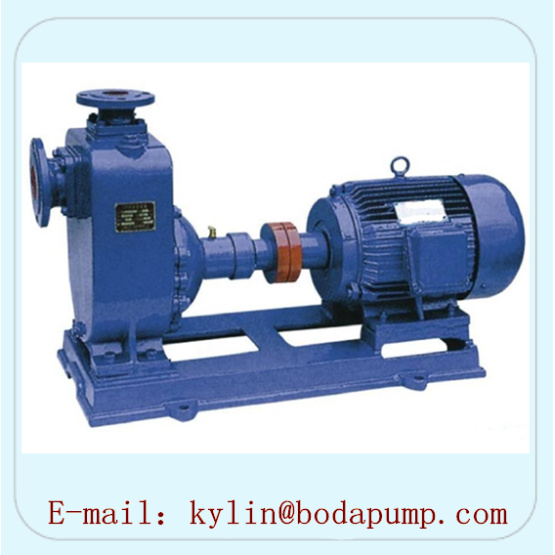 Chemical Self-Priming Pump (ZX)