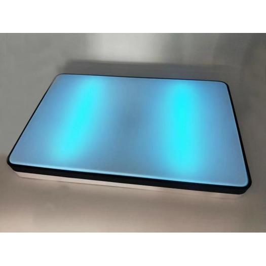 Intelligent App Control UV Disinfection Ceiling Lamp