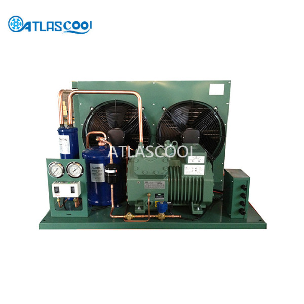 Walk in Freezer Compressor Condensing Unit