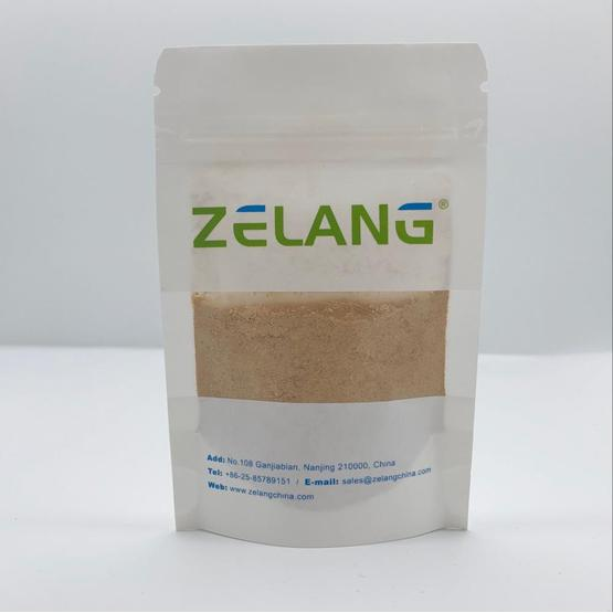 natural Lemon Balm extract powder