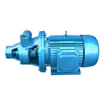1W single stage vortex pump