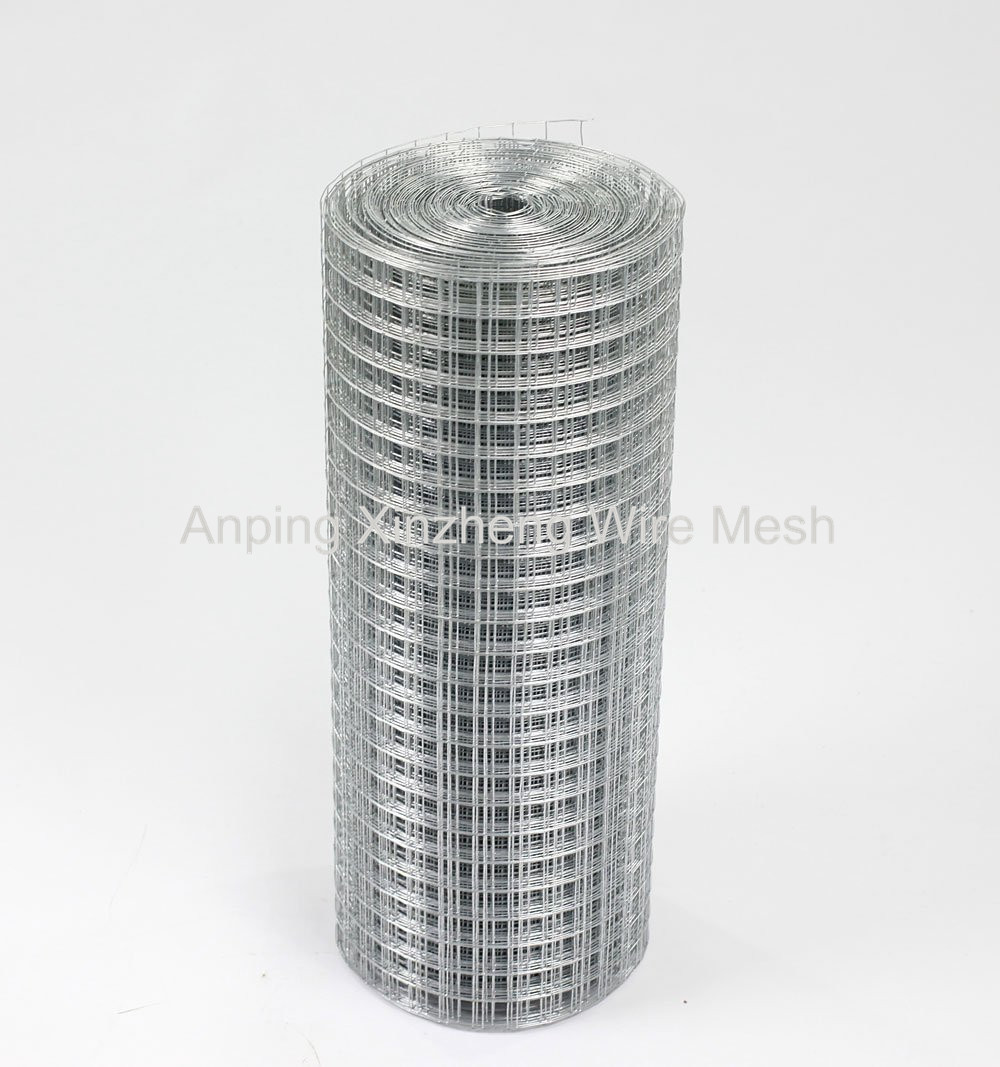 SS Weld Wire Mesh