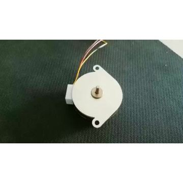 DC 24V Motor |Gear Reduction Motor for Rotisserie