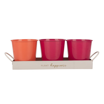 Mini tray plant pot planter set