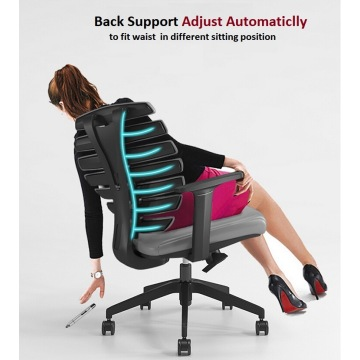Adjustable Back Support Ergonomic Computer Office Chair