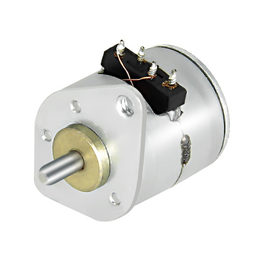 10BY25-001 Motor| High Torque Stepper Motor with Gearbox