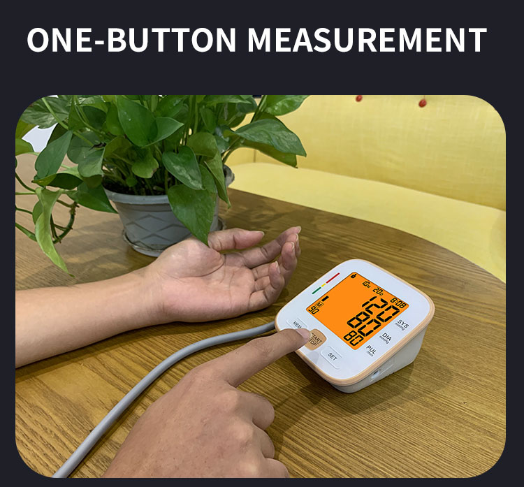 digital bp apparatus