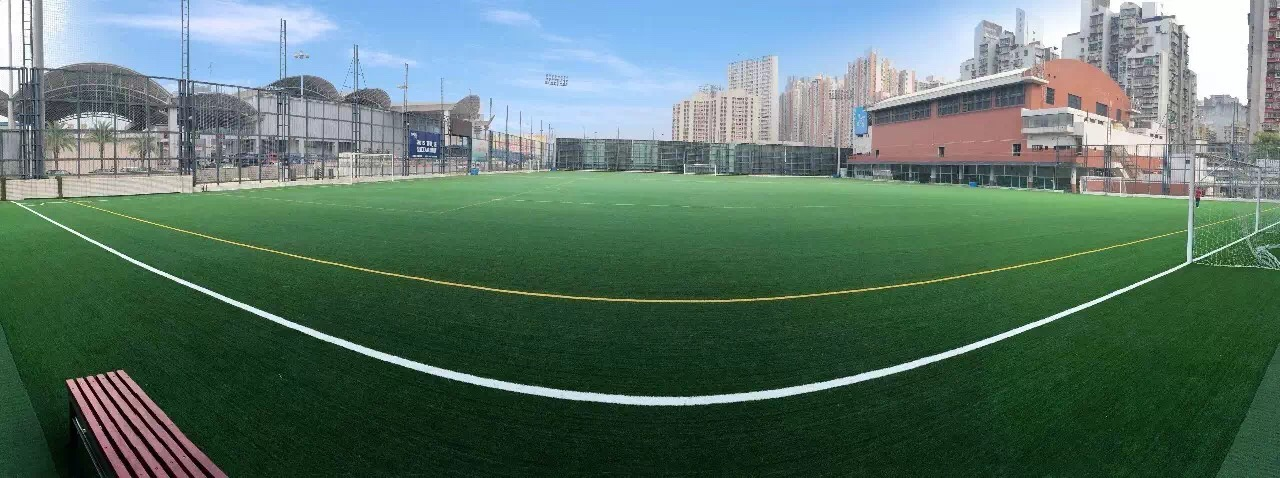 Courts Synthetic Soccer Grass