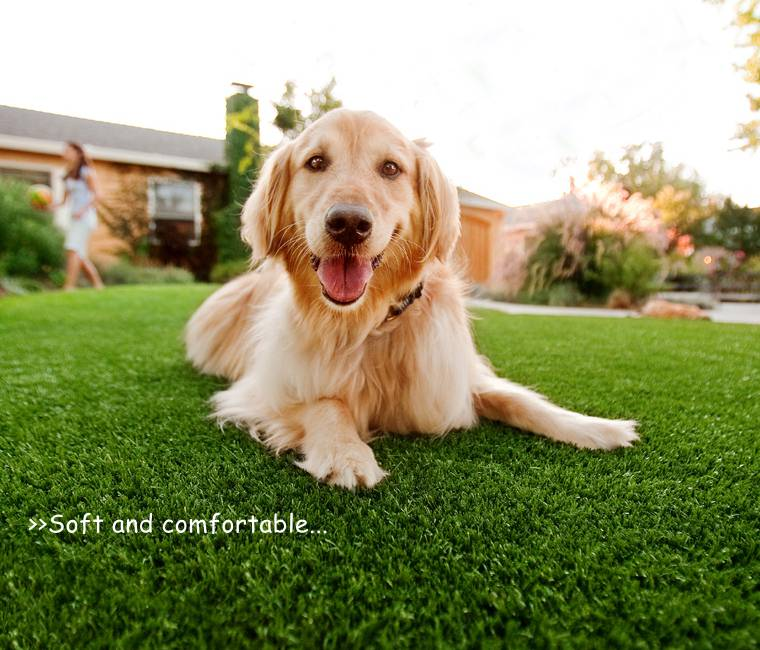 Carpet For Garden Flooring